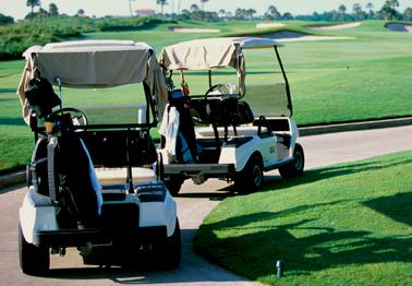 Golf Carts Road Runner